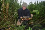 Tench of the Kentish Marshlands- Part One