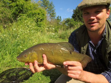 gc-with-nice-tench