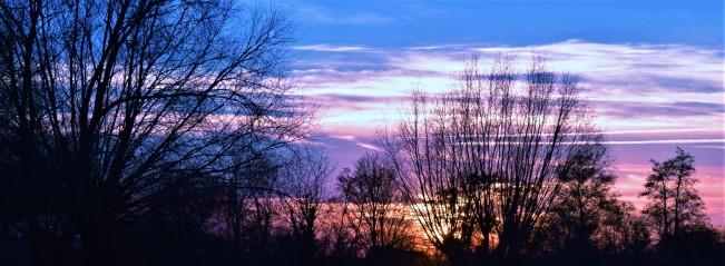 dusk streaks.jpg