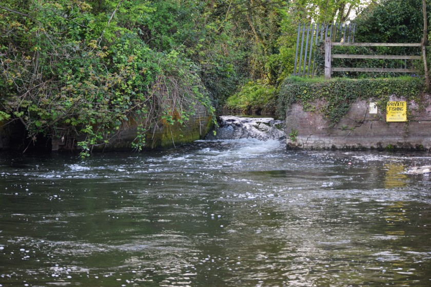 Raging Weir 3