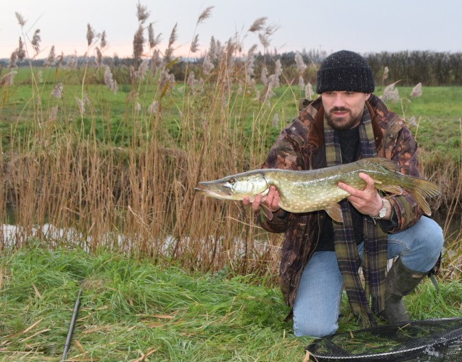 Pike on the northern levels